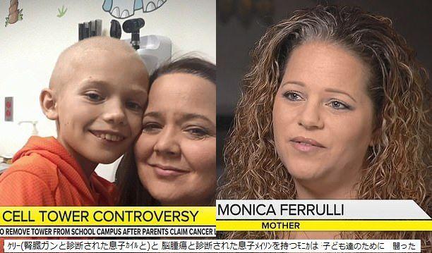 11866966-6886561-Monica_Ferrulli_s_son_Mason_was_diagnosed_with_a_brain_tumor_in_-m-19_1554397706589.jpg