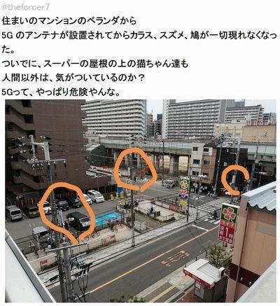 5G関西.jpg