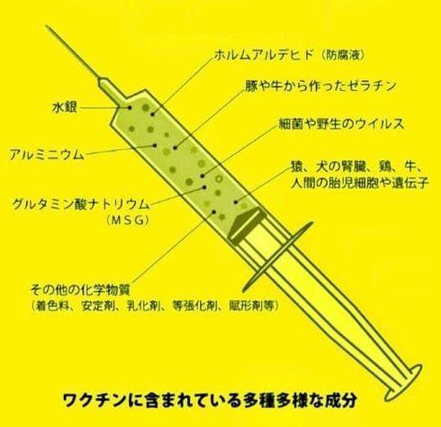 ワクチン成分1.jpg