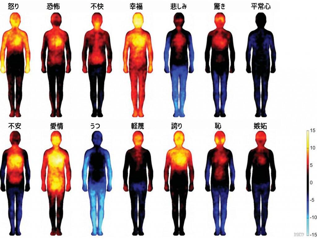 感情と体.jpg