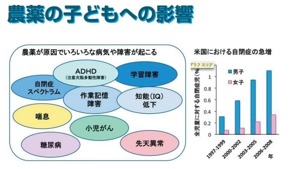 農薬の子供への影響.jpg