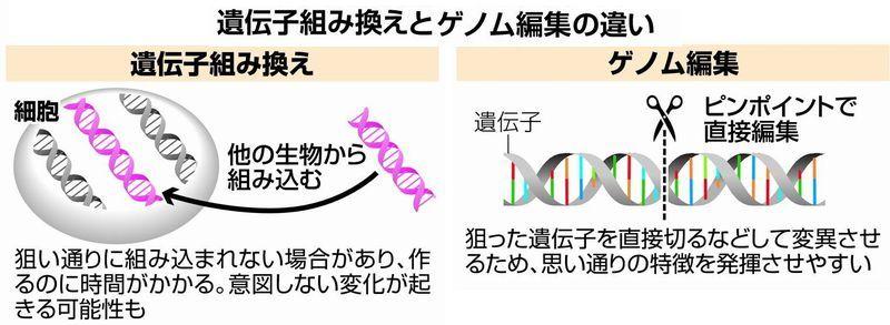 GMO genome-edit.jpg