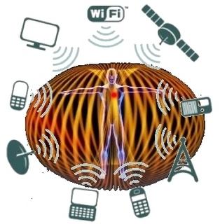 Human energy field torus.jpg