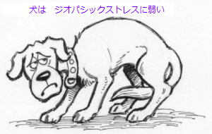 Miserable-Dog_DRAWING.png