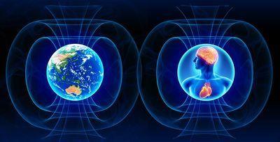 coherence-bridging-personal-social-and-global-health.jpg