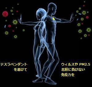 pendant-immunity-kafun.jpg